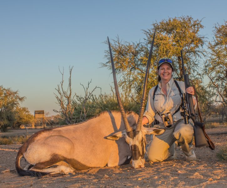 "For those who think the .243 Win. isn't ""enough gun"" for big game and especially for Africa, this mature gemsbok was taken with a single shot from a .243 Win., using an 85-grain Nosler Partition."