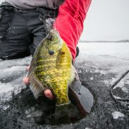 As lakes freeze and many sportsmen turn their attention to hunting, those anglers who are first on the hard water can often experience fantastic fishing. The key is to be SAFE.