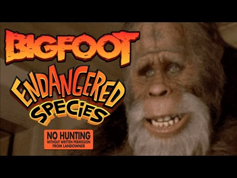 is bigfoot on the endangered species list