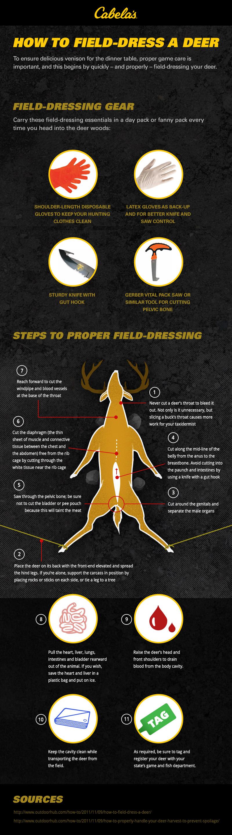Best Way to Field-Dress a Deer