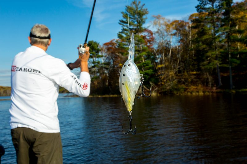 livetarget-threadfin-crankbait