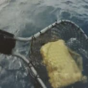 Fisherman Lands Kilo of Cocaine