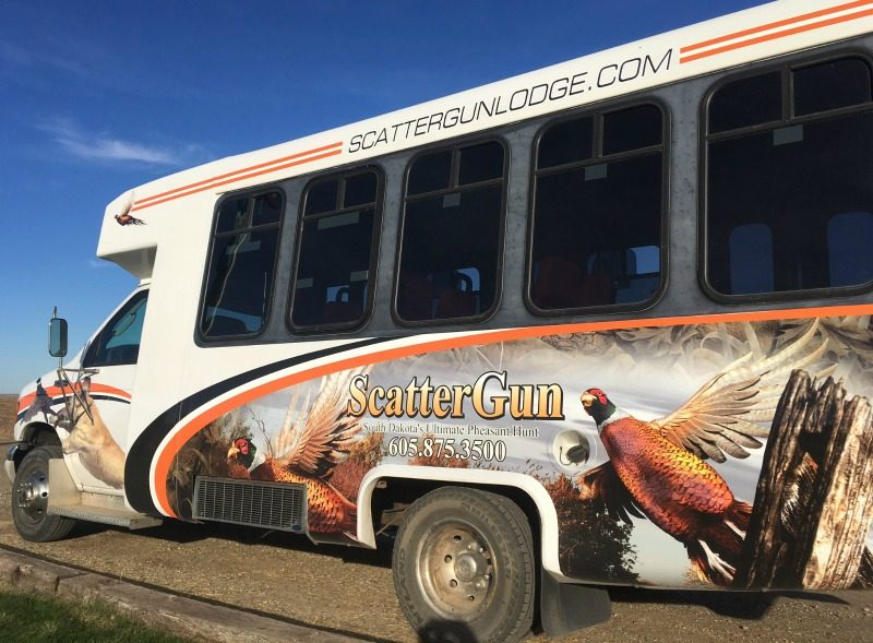 pheasant-bus ScatterGun