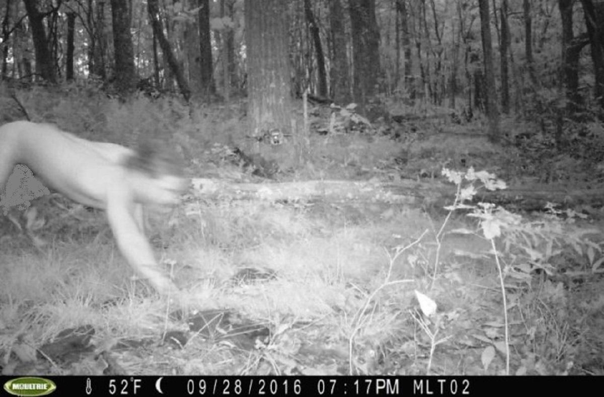 Trailcam captures naked man