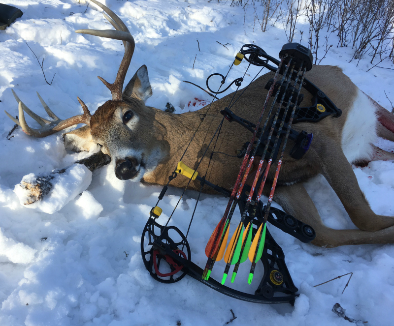 "The author's 2016 archery gear list included: Mathews Z7 bow (drawing 54 pounds at 27.5 inches), Schaffer GEN II drop-away arrow rest, Black Gold fixed-pin bowsight, KTECH stabilizer, Scott Little Goose release, Beman 400 arrows, 125-grain 4-Blade Magnus Stinger Buzzcut broadhead, and Bushnell ""The Truth"" rangefinder."
