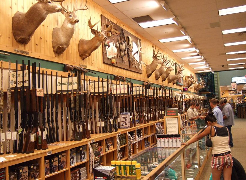 Guns Sales in America