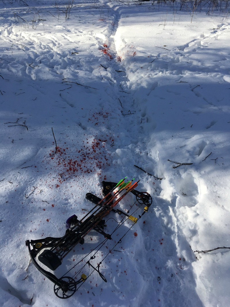 Happiness is an easy-to-follow blood-trail.