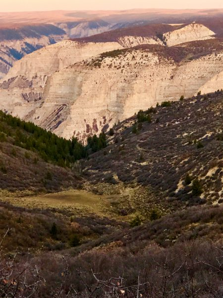 The drainage where the author found his elk; look close and you can actually see a few elk in the bottom.