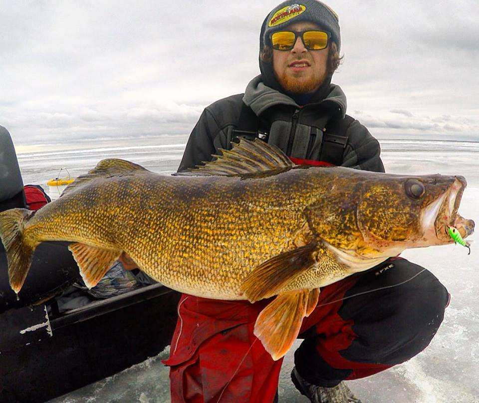 Targeting late ice walleyes outdoorhub for How to ice fish