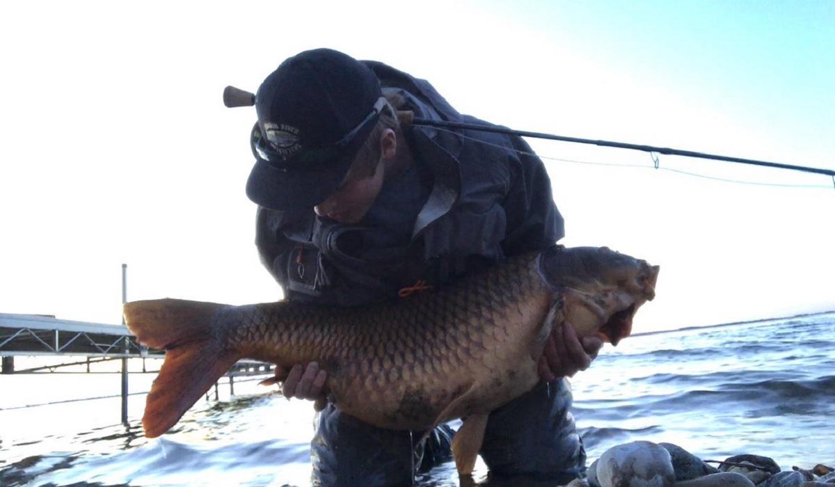 New south dakota common carp state record possible new for South dakota fishing