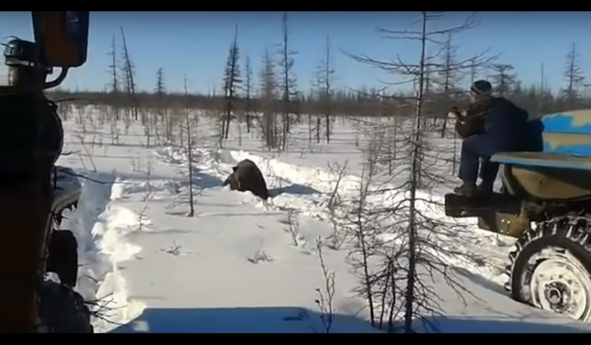 Graphic Video: Russian Truckers Maliciously Run Over Brown ...