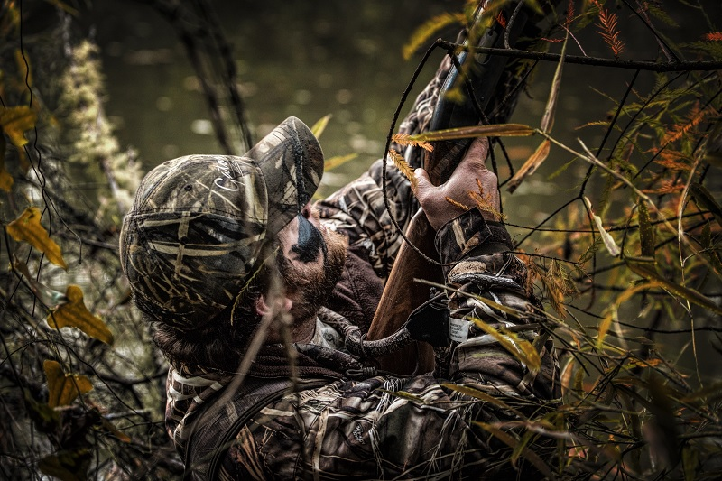 8 Surefire Ways to Ruin a Duck Hunting Dog