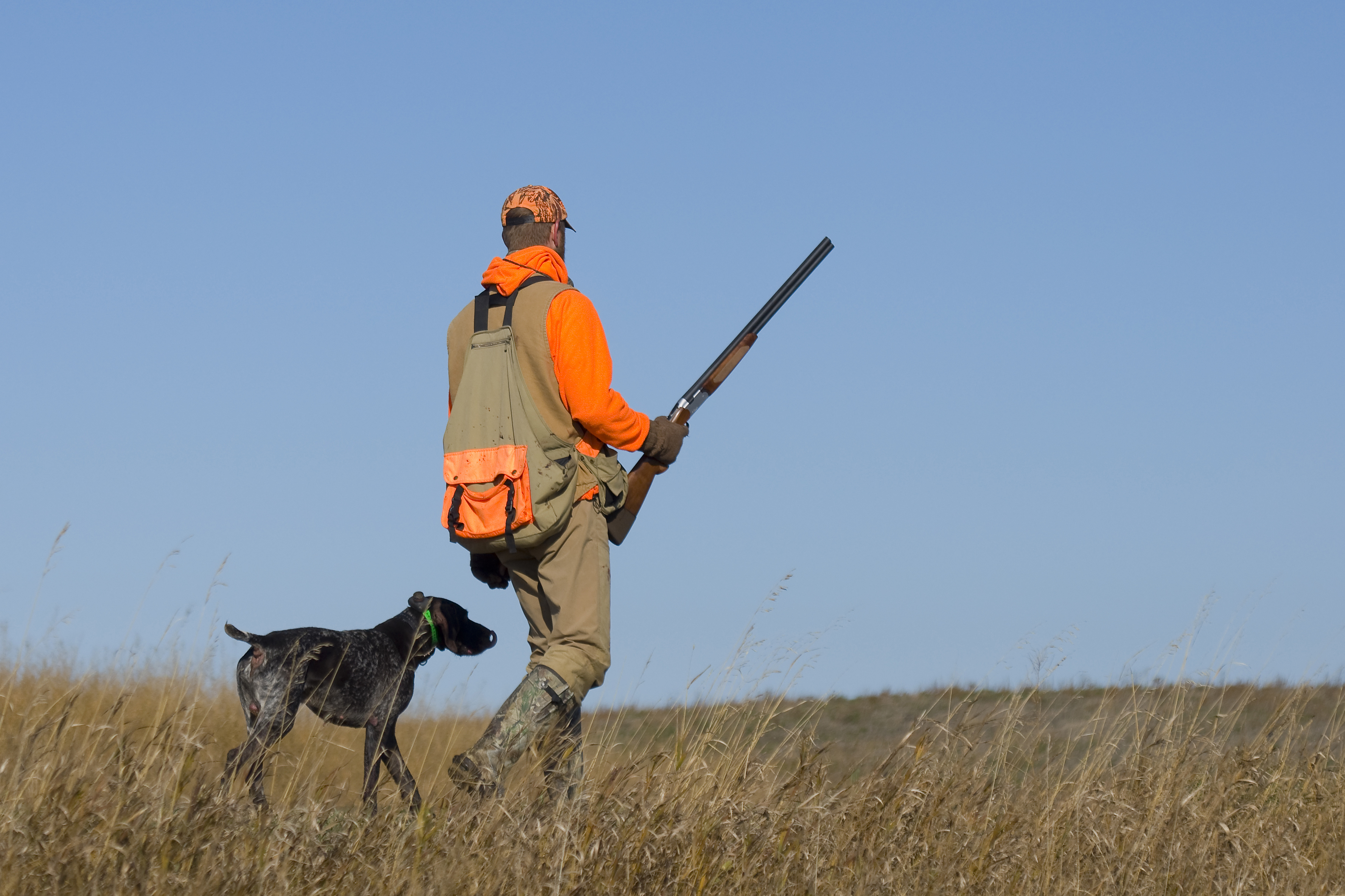 Best Grouse Hunting Gear