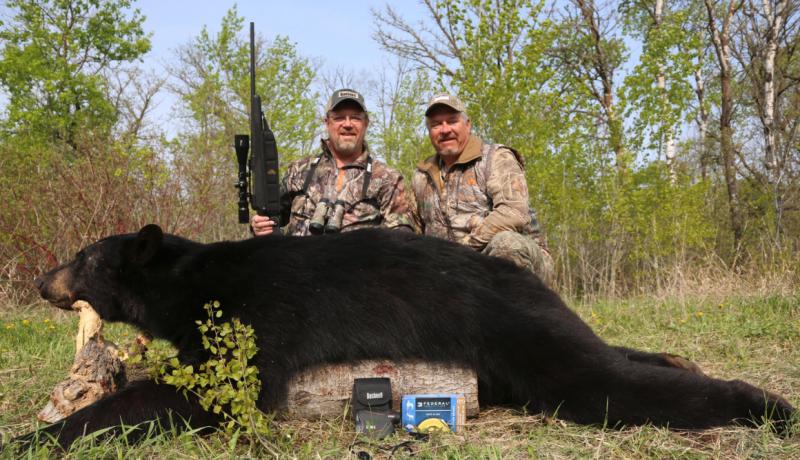 Manitoba Black Bear 7