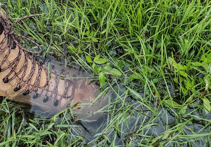 Irish Setter Ravine Hunting Boots