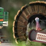 Related Thumbnail Bagging Birds – The 5 Best Turkey Hunting Loads for Shotguns